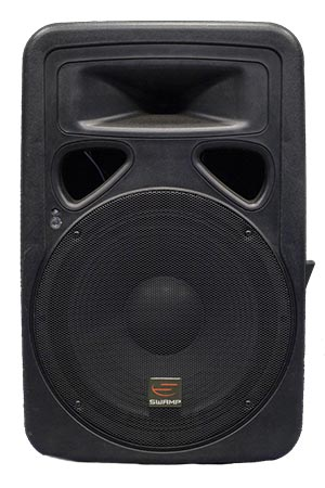 15 in 600W Powered Speaker Hire | Craig Williams Promotions